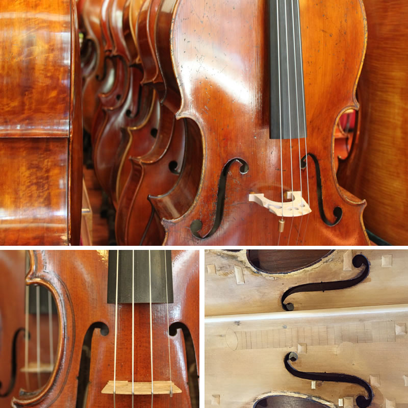 Muni Strings Violas